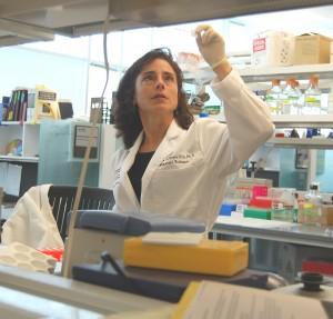 Amelia Gallitano, MD, PhD at the UA College of Medicine - Phoenix