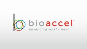 bioaccel new