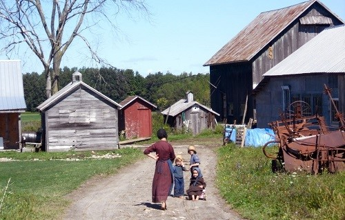 Children amish farm UA
